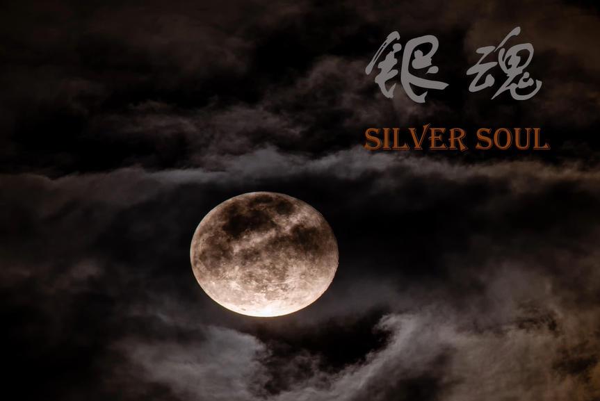 Silver Soul Free Download